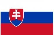 Slovenský ministr zaštítí Firemní auto roku
